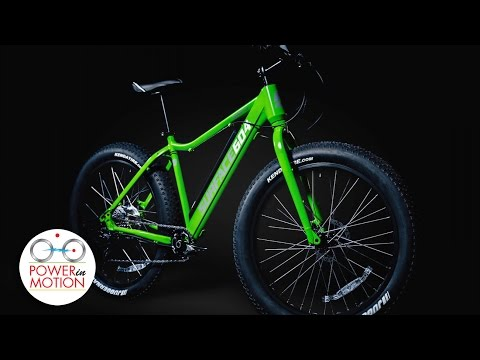 Surface 604 Boar: 2016 Electric Fatbike